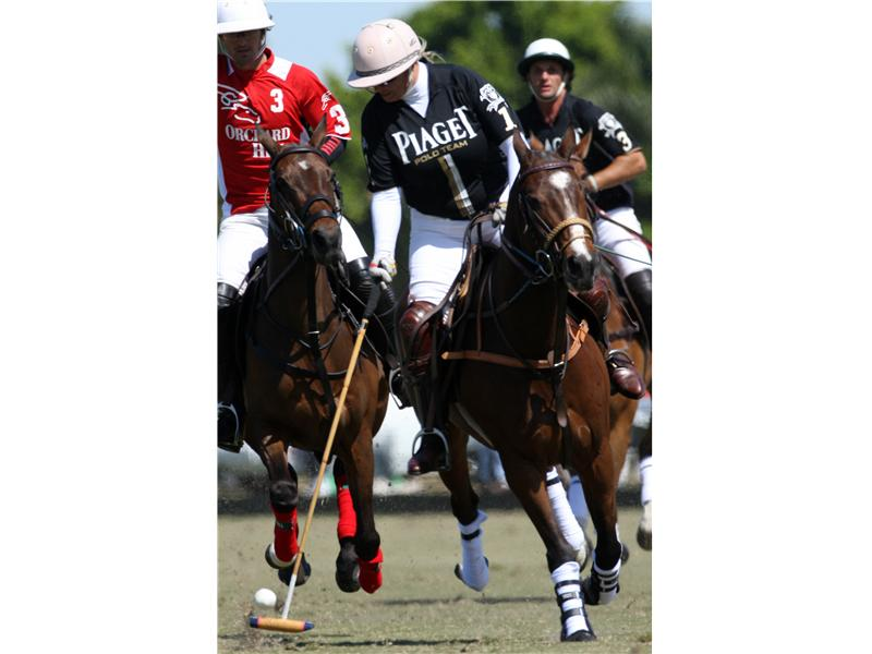 Most Consecutive Chukkers Played In A Polo Game