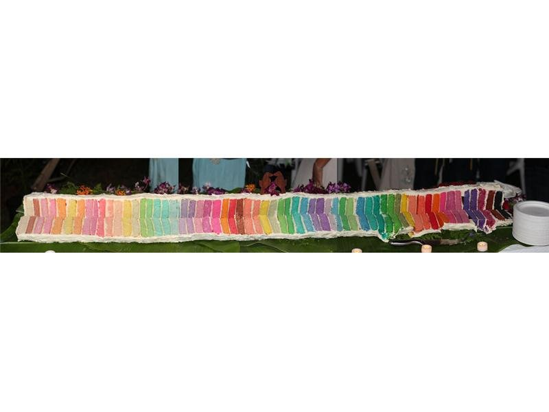 Most Colors In A Wedding Cake