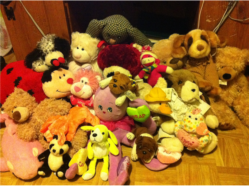Most Stuffed Animals In A Bedroom