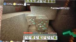 "Most Diamond Blocks Found In A Single Bunch In ""Minecraft"""