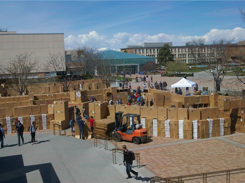 Largest Cardboard Fort