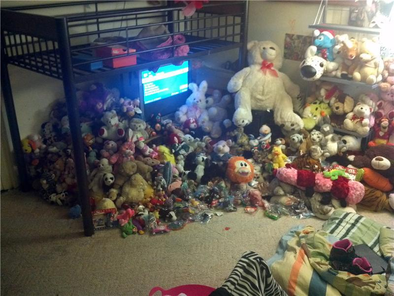 Largest Stuffed Toy Collection