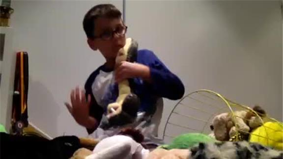 Most Stuffed Animals Held In Arms At Once