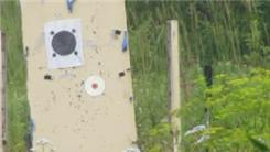Most Rifle Shots Passed Through A CD Center Hole From 65 Yards
