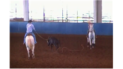Fastest Rodeo Team Roping Run