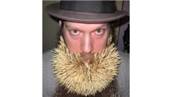 Largest Toothpick Beard