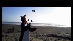 Most Objects Juggled On A Beach While Wearing A Penguin Costume