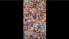 Largest Collection Of 'Littlest Pet Shop' Pets
