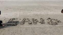 "Largest ""Sand"" Written On Sand"