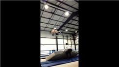 Most Tandem Trampoline Double Somersaults