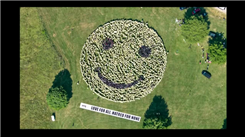 Largest Group To Make A Smiley Face