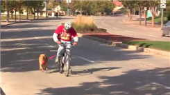 Fastest 1/4 Mile Bike Ride With Dog