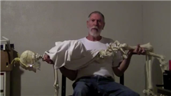 Most Bench Presses Of A Medical Model Adult Skeleton In One Minute